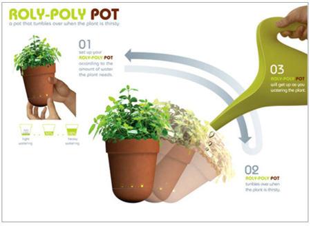 Roly_pot2_3