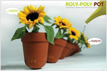 Roly_pot_3